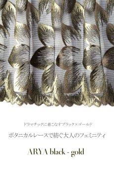 画像14: 一枚レースブラジャー(大きいサイズ・B〜Mカップ・ブラック×ゴールド)[ARYA black-gold B104]【送料無料】輸入下着・高級ランジェリー (14)