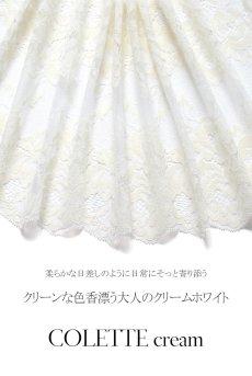 画像16: ノンパテッドブラ(大きいサイズ・B〜Kカップ・ホワイト×クリーム)[COLETTE cream B161]【送料無料】輸入下着・高級ランジェリー (16)