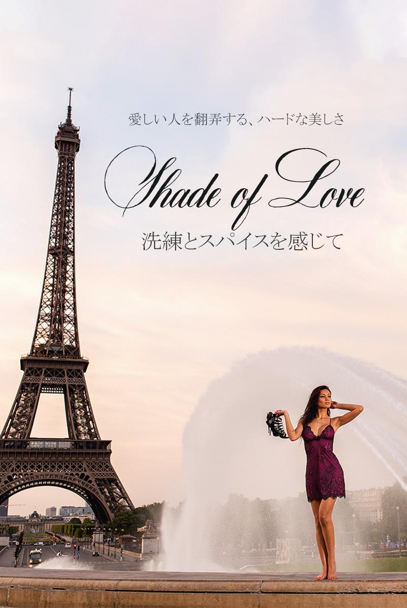 axami アクサミ Shades of Love V-6469 レース画像